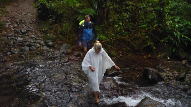 regnskogsvandring-dominica