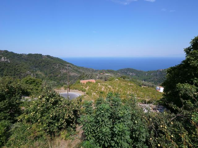Samos view (Copy)