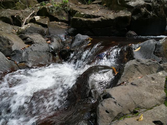 Desahies River walk 3