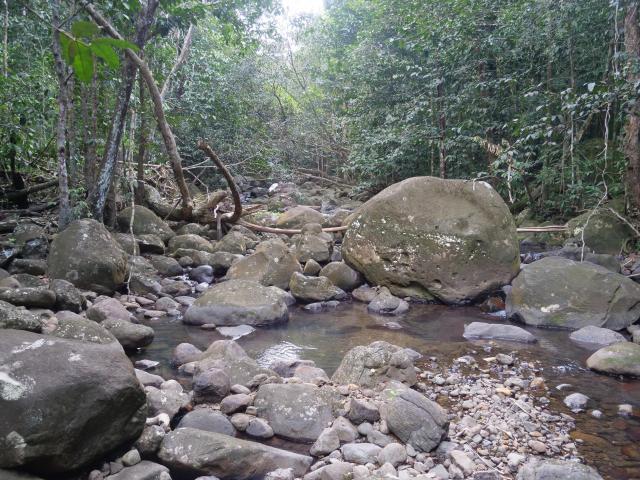 Desahies River walk 4