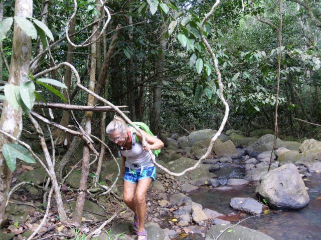 Desahies River walk 5