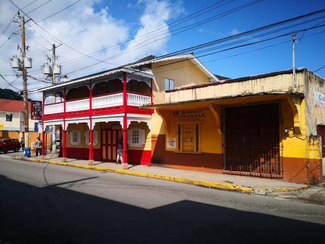 Port Antonio collotful house