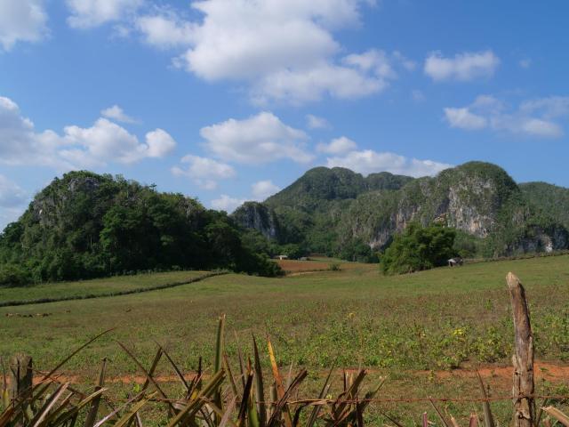 Vinjales landscape 2