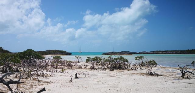 Shrouds Cay 3