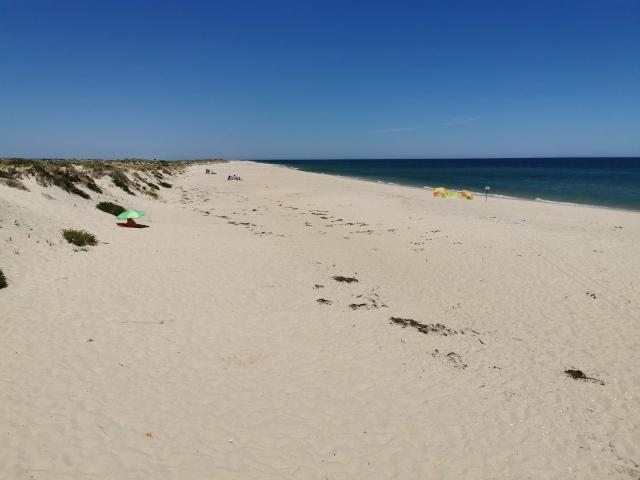 Culatra beach 1