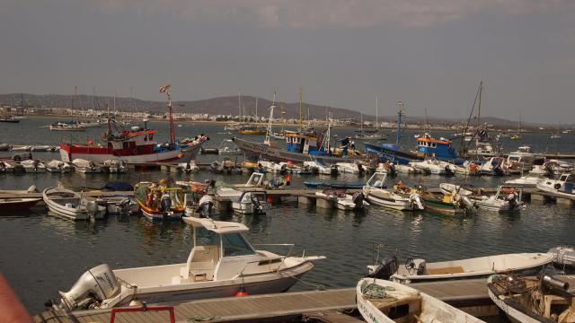 Culatra harbor 1