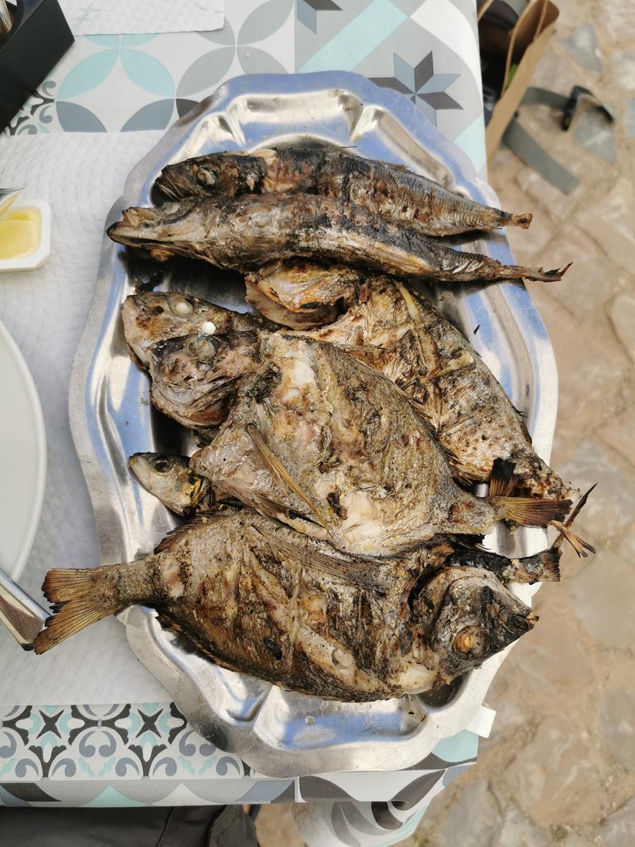 Ohlao Fish
